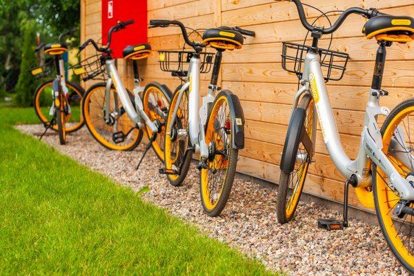 rowery-do-wynjecia